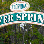 Saving Silver Springs